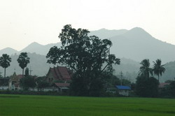 Rural view of a Northern Thai Temple and mountain.